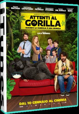 Attenti Al Gorilla (2018).avi WEBRiP XviD AC3 - iTA
